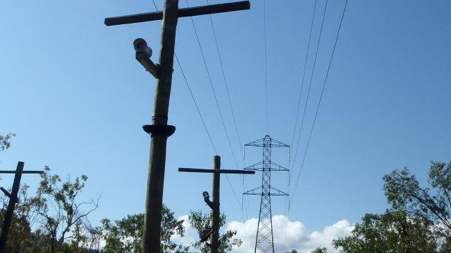 These poles built by Powerlink enable the endangered mahogany glider to cross the channels cleared through the bush for high-voltage power lines
