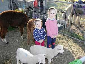 Lockyer and Somerset show societies receive funding boost