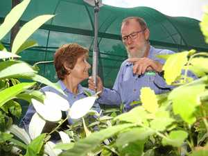 LNP to fund the greening of the Whitsundays