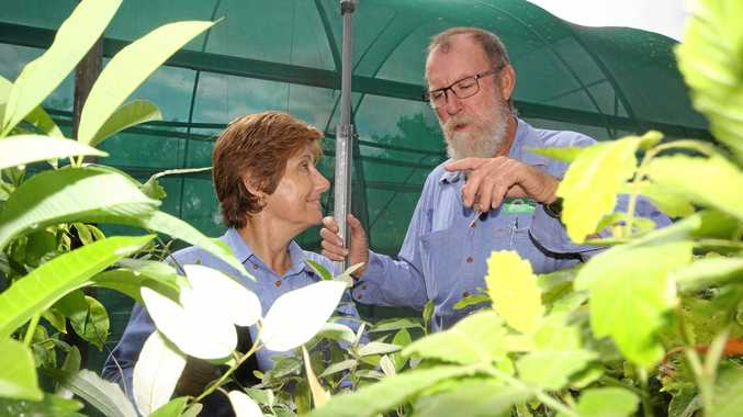 GOING GREEN: Whitsunday Catchment Landcare members Kathy Bernett and Peter Alden.