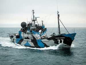 Flagship Steve Irwin sails the East Coast against Adani