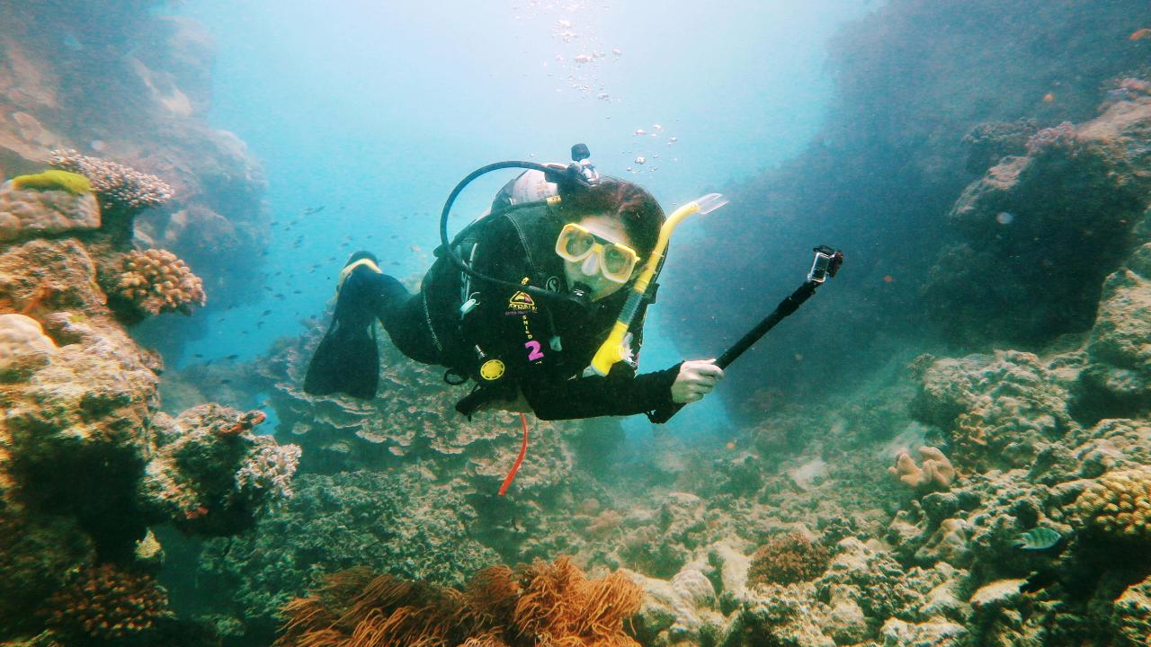 A scuba diver views coral growing on a reef wall at Hastings Reef off Cairns. Picture: Brendan Radke