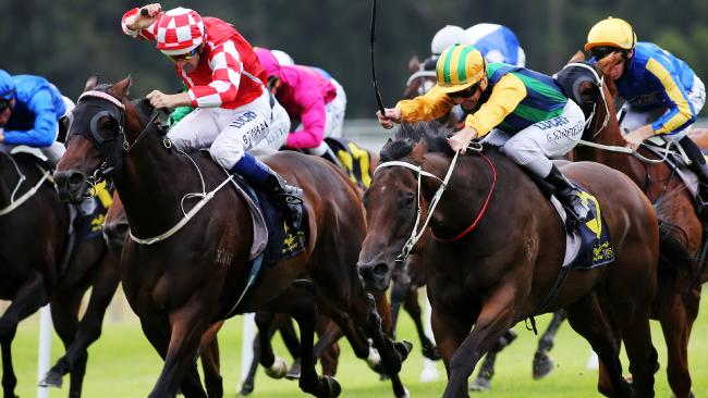 Thoroughbred racing returns to Gosford on Thursday afternoon.