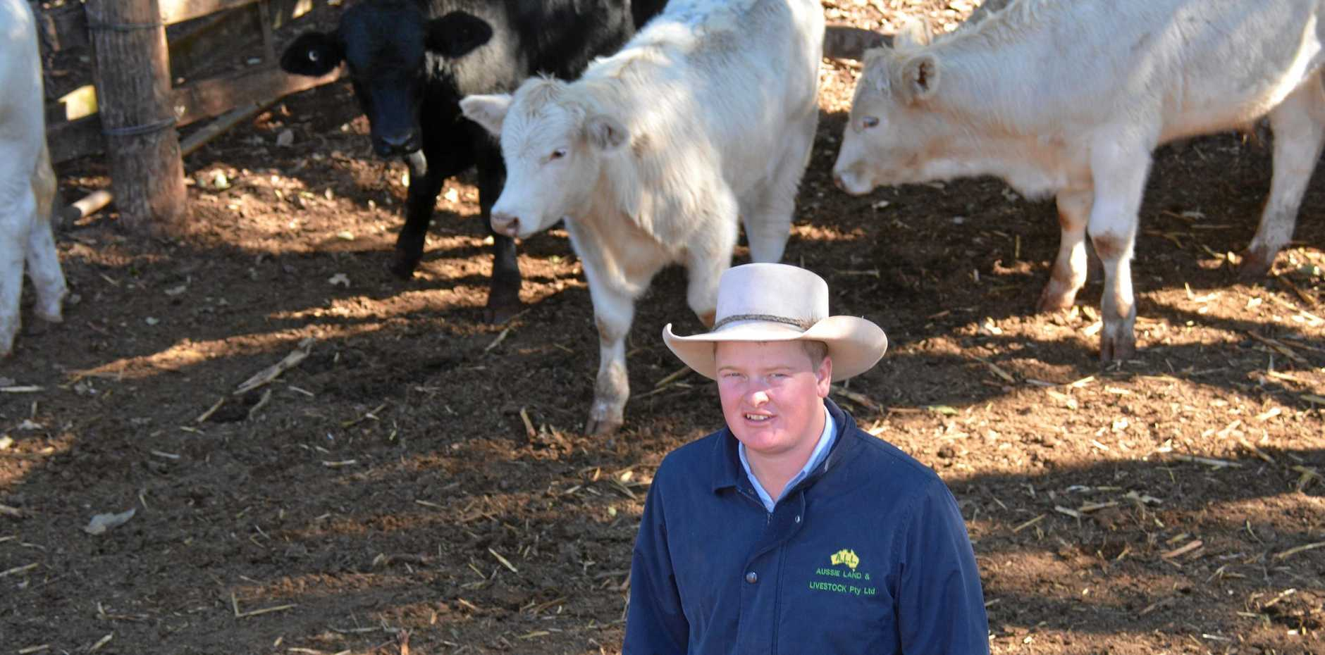 Aussie Land and Livestock agent Corey Evans said it was important to stay safe in farm environments.