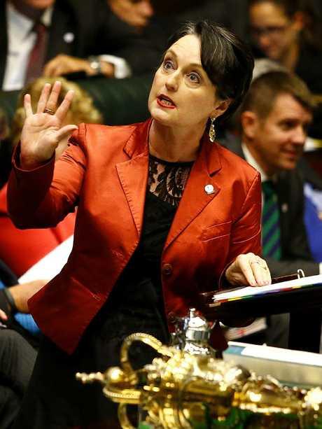 Senior State Liberal MP Pru Goward. Picture: Bradley Hunter