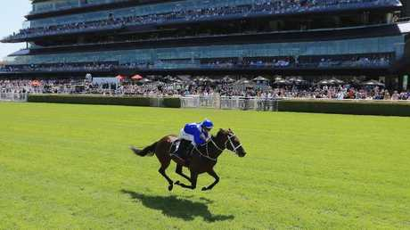 Winx wins a barrier trial between races on Apollo Stakes Day at Royal Randwick in February. Picture: AAP