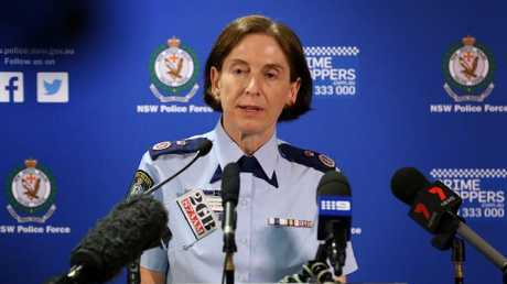 Former Deputy Police Commissioner Cath Burn. Picture: Jane Dempster