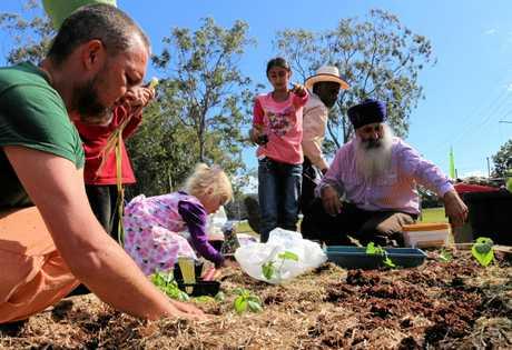 Woolgoolga community garden Woopi Gardens open day.