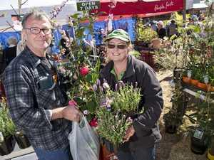 Camellia Show and Garden Expo