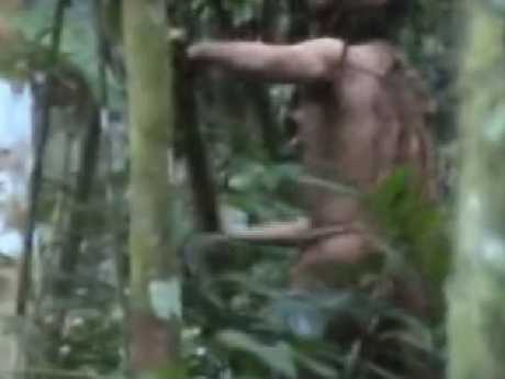 Man was filmed cutting down a tree when authorities last checked on him in May.