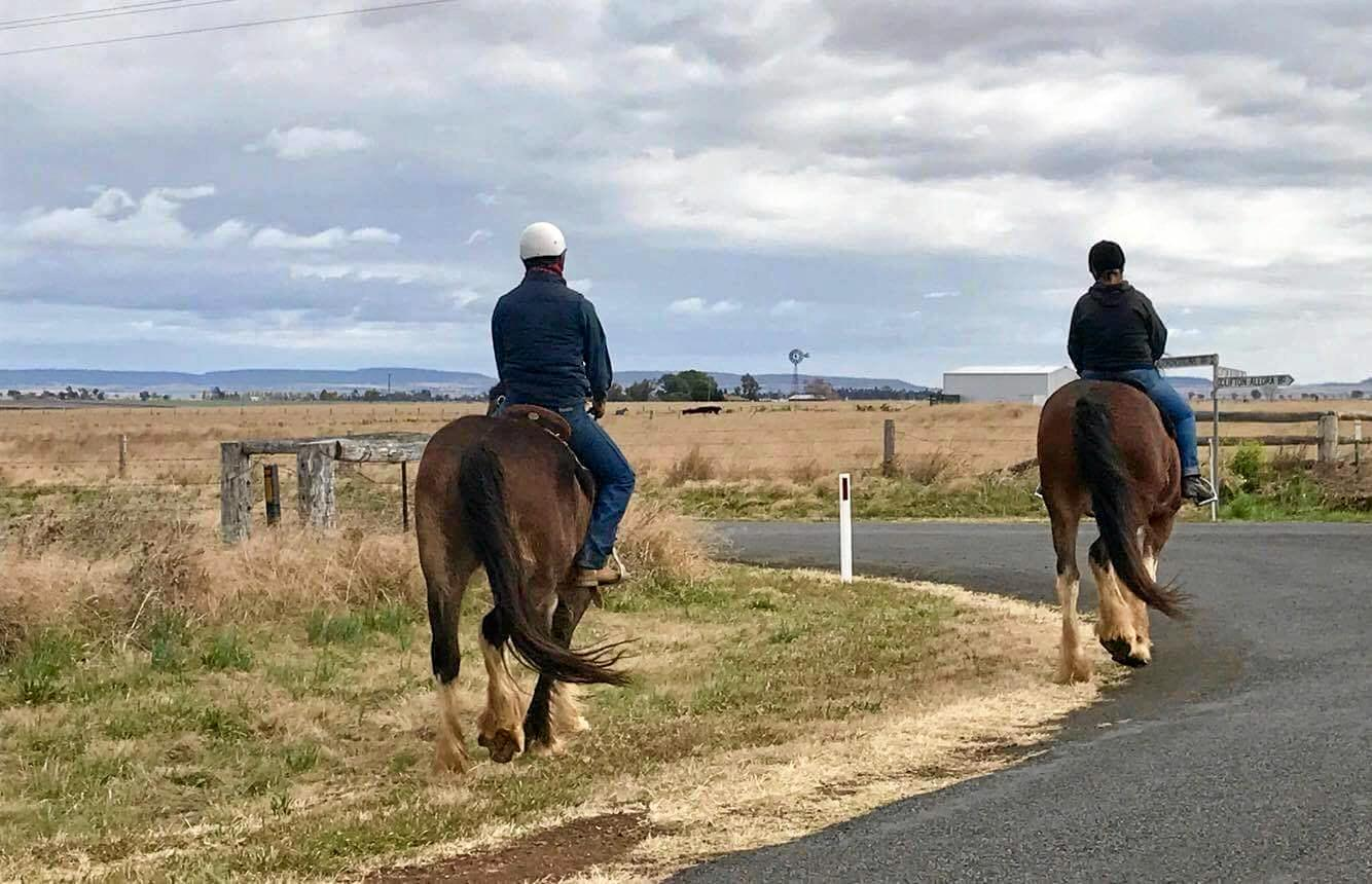 STOP FOR HORSES: Clare Gorwyn of Glengallan Heavy Horses is concerned that motorists aren't aware of the laws surrounding agitated horses on riding on roads.