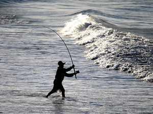 Major fishing overhaul going swimmingly: report