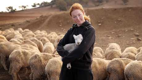 Lillie Jones with one of many abandoned lambs. Picture: Sam Ruttyn