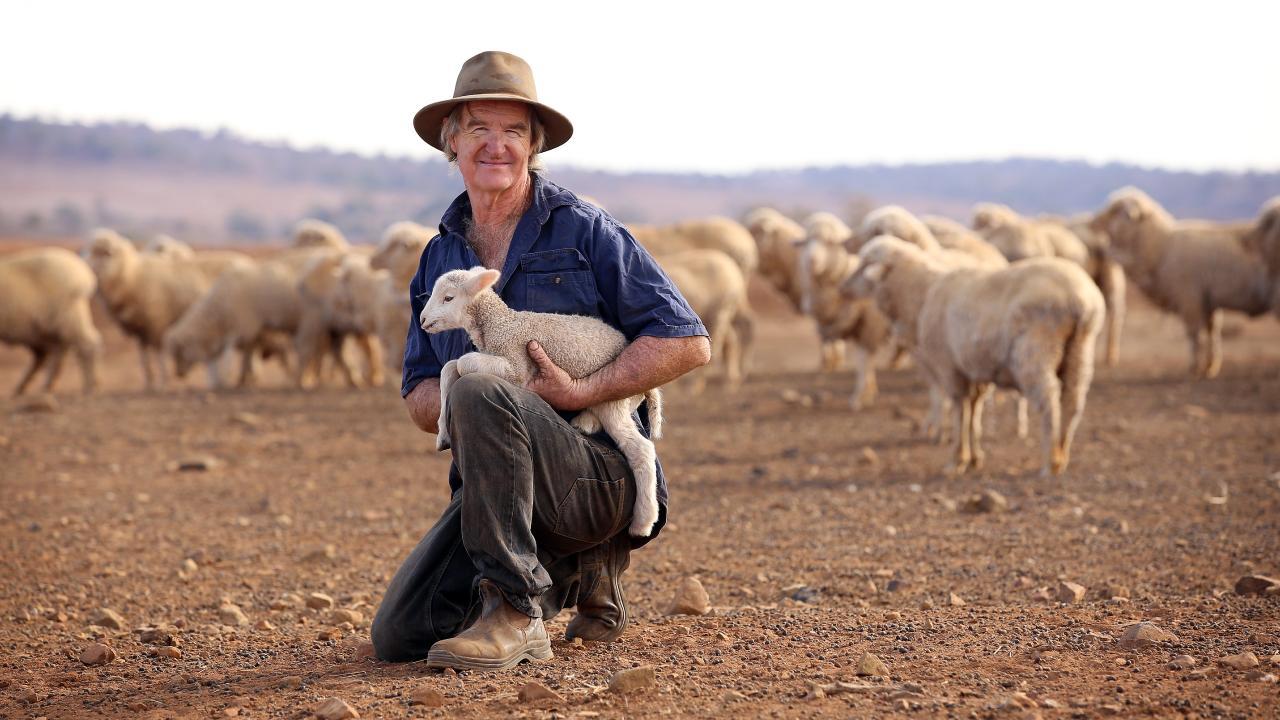 Sheep farmer Les Jones bearing the brunt of drought.