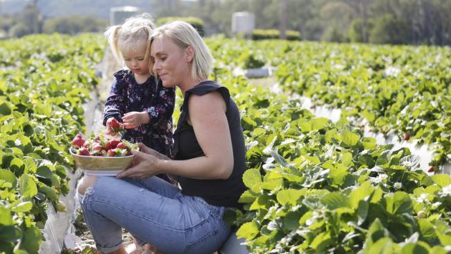 Aster Evans, 2, with mum Chloe Evans. Picture: AAP/Megan Slade