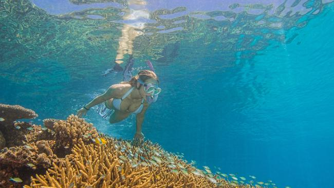 The Great Barrier Reef is one of the top destinations on Aussie bucket lists. Picture: Christian Miller