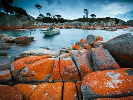 A quarter of survey respondents (25 per cent) had visited the Bay of Fires.