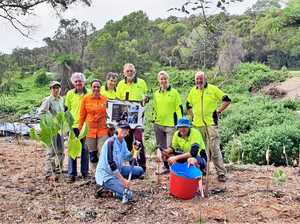 Join and dig deep on Sunday for National Tree Day