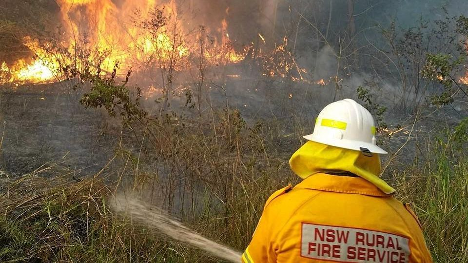 Crews from the RFS, NPWS and NSW State forests are working together to control a blaze near Rappville.