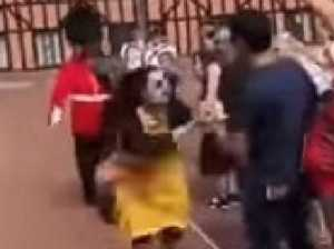 Queen's Guard soldier shoves tourist