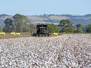 Snapshot of rural debt in Queensland