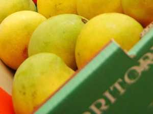 Needle found in mango