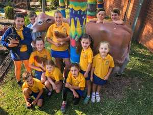 NOT IN A FLAP: Students and chooks from Mullumbimby