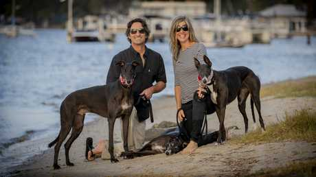 John and Shaunagh Wood with Greyhounds