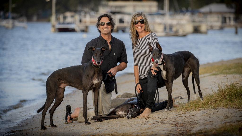 John and Shaunagh Wood with Greyhounds
