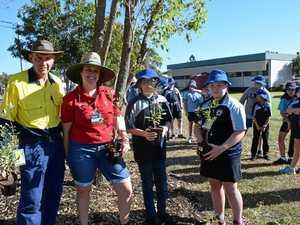 Teamwork grows sustainability at Sunbury School
