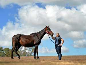 Balnagowan woman calls for action after mare found starved