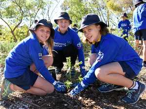 Kids dig national tree day
