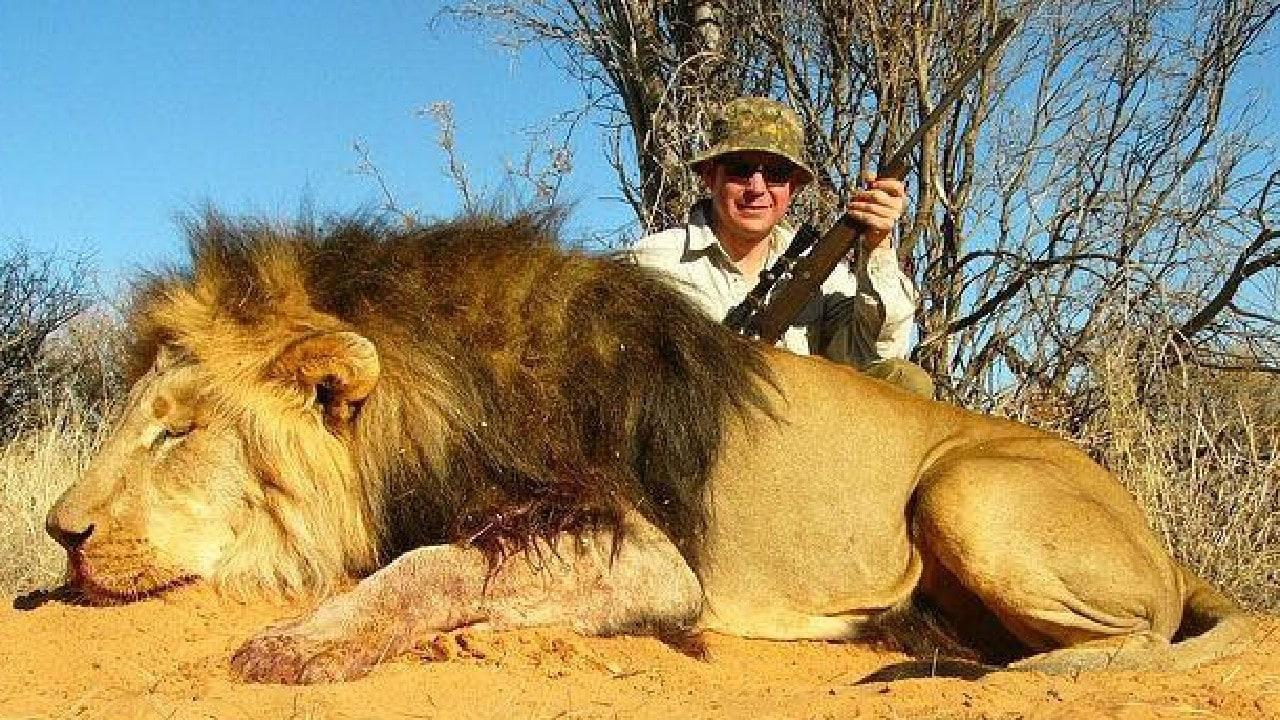Gold Coast businessman Vitali Roesch with a lion he shot