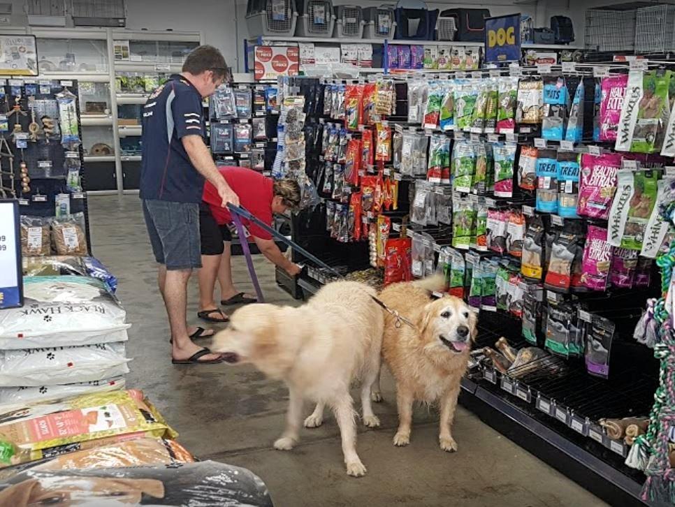 Pet Force is in liquidation.