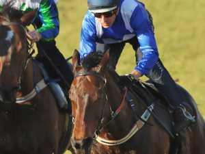 Secretariat spin to sort out Winx rivals