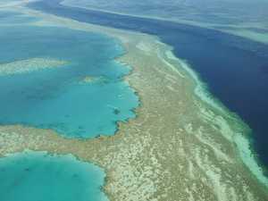 $443m Reef handout slammed