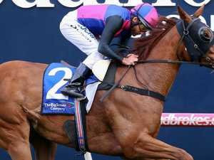 Vega Magic snapped up for The Everest