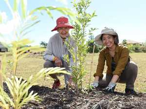 National Tree Day Fraser Coast