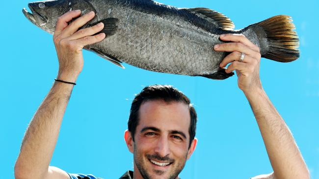 Fish Factory owner Andrew Solomon with a Queensland-farmed barramundi. Picture: Tara Croser