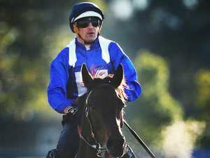 Godolphin star eyes Cox Plate date with Winx