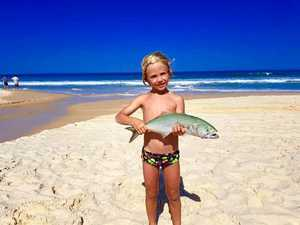Fraser Island waters set to reopen to fishers