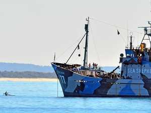 Coast crowds gather for Sea Shepherd's Steve Irwin