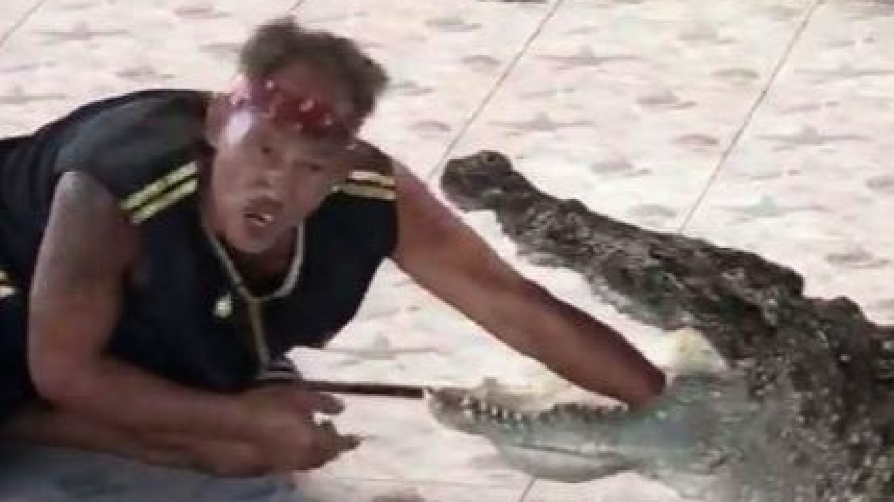 Angry crocodile bites trainer's arm. Picture: Facebook