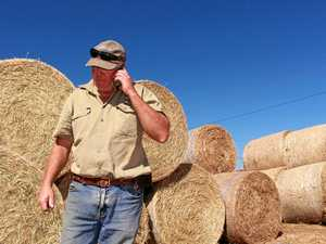 FARMAGEDDON: Landowners warned about underground market