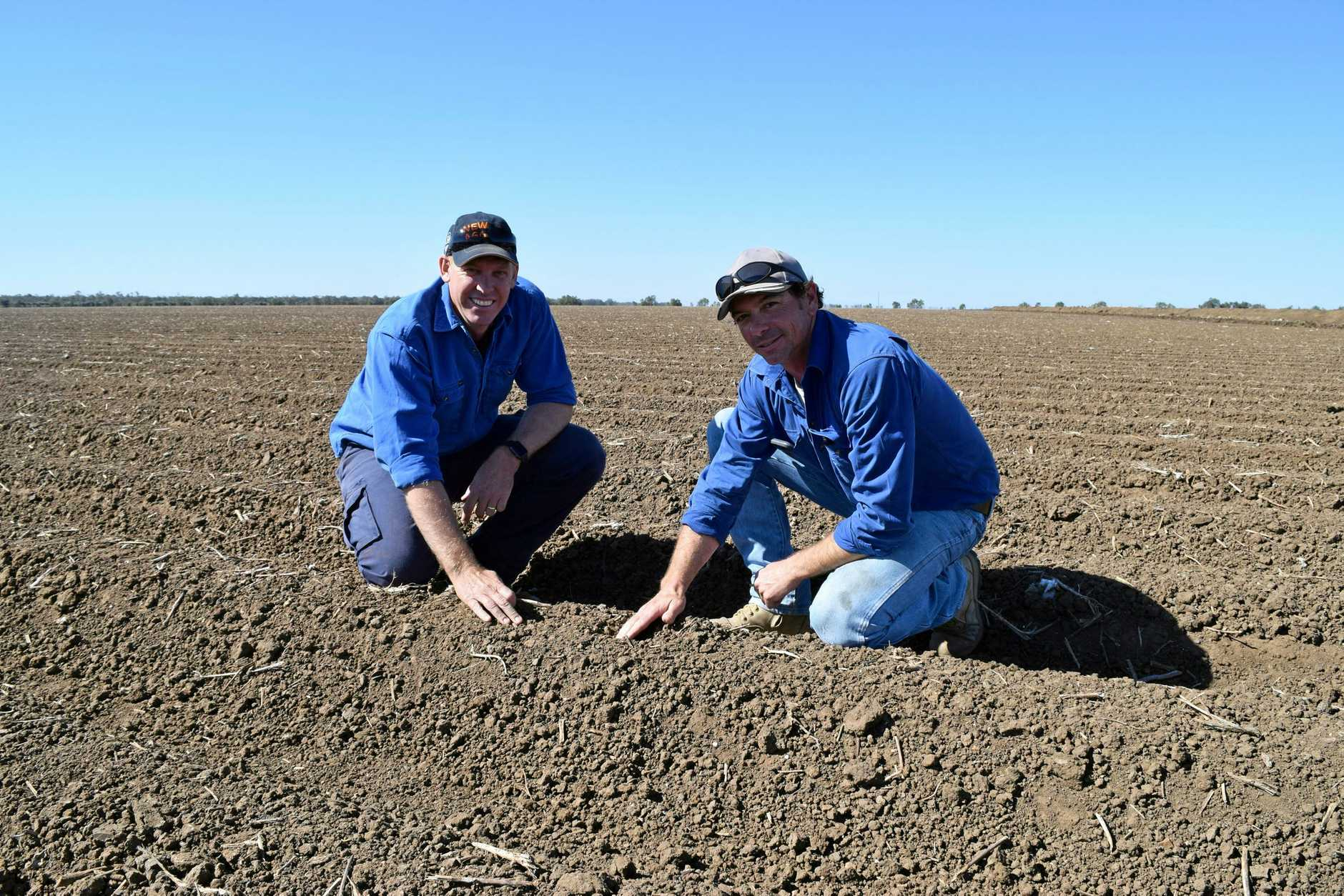 Irrigation cotton farmers Aaron Kiely and Cameron Geddes.