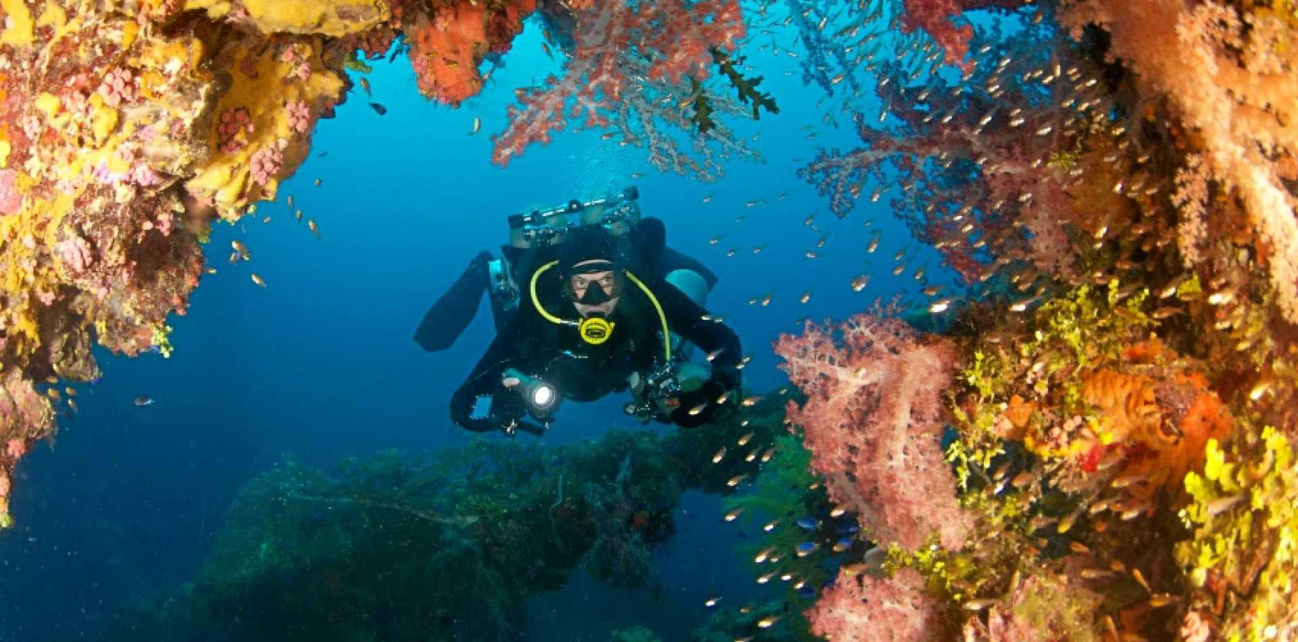 WHAT LIES BENEATH: Diving to deeper depths has its own set of wonders.