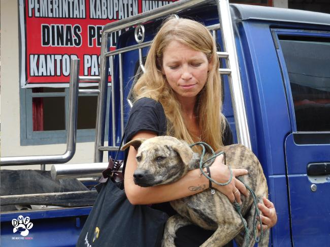 The dog meat trade could put tourists at risk.