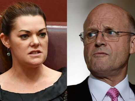 Senator Sarah Hanson-Young has filed the action in the Federal Court against David Leyonhjelm.