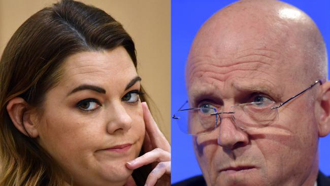 Greens Senator Sarah Hanson-Young has filed  a defamation suit against Liberal Democrats senator David Leyonhjelm.