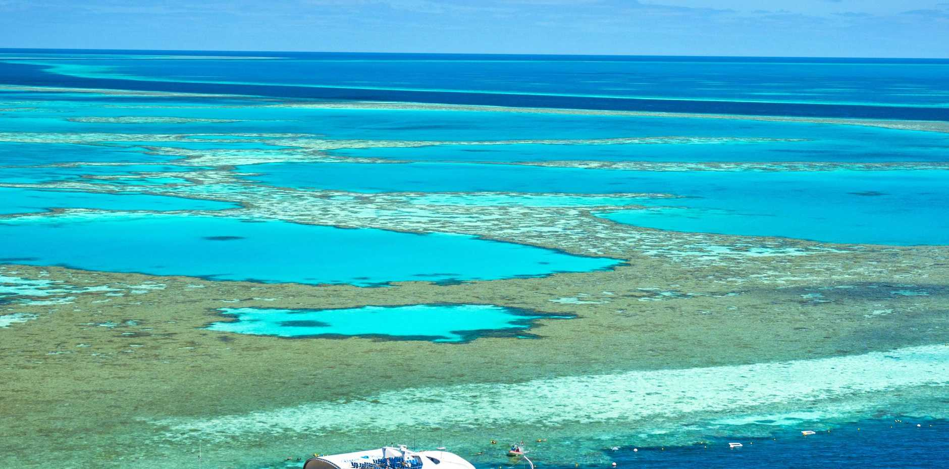SAVE THE REEF: Reduced land runoff could help preserve the Great Barrier Reef.
